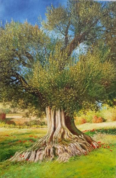 Eleonore Gagel - Olivenbaum