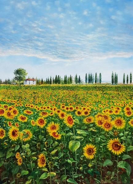 Eleonore Gagel - Sonnenblumenfeld
