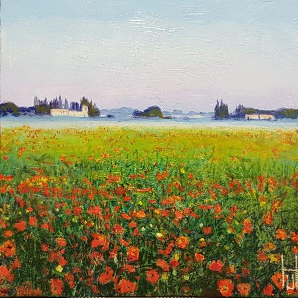 Uwe Herbst Mohn in der Provence