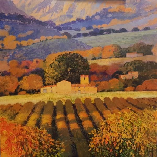 Uwe Herbst Weinberge im Luberon